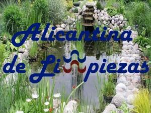 Limpieza Mantenimientos Servicios Alicante Empresa