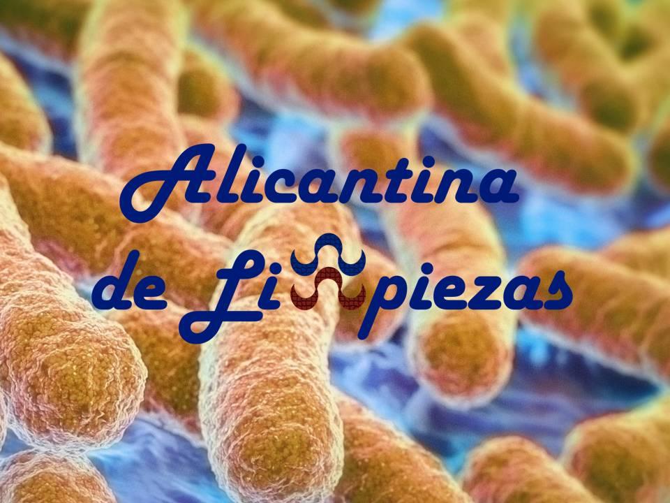Empresa Limpieza y Mantenimientos Alicante
