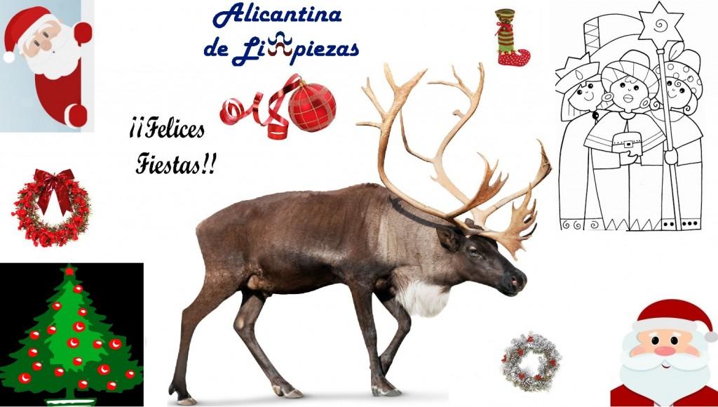 Navidad Alicante Christmas