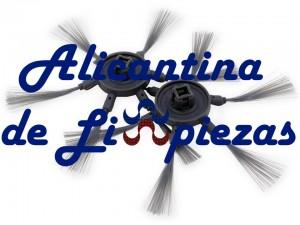 Alicante Limpiezas Servicios y Mantenimientos