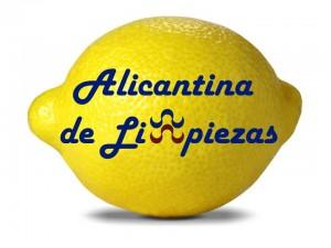 Limpiezas Servicios Mantenimientos Alicante
