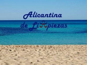 Empresa de Limpiezas Servicios Mantenimientos Alicante