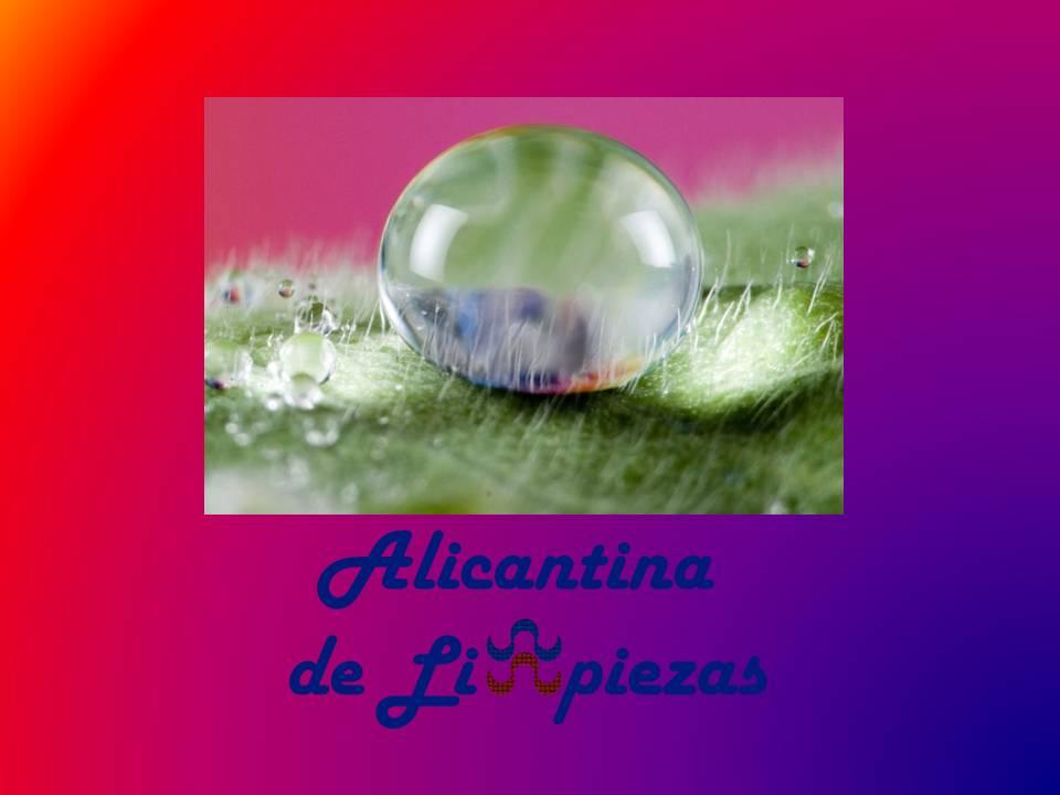 Empresa Alicantina de Limpiezas Limpieza en Alicante Fincas Mantenimientos