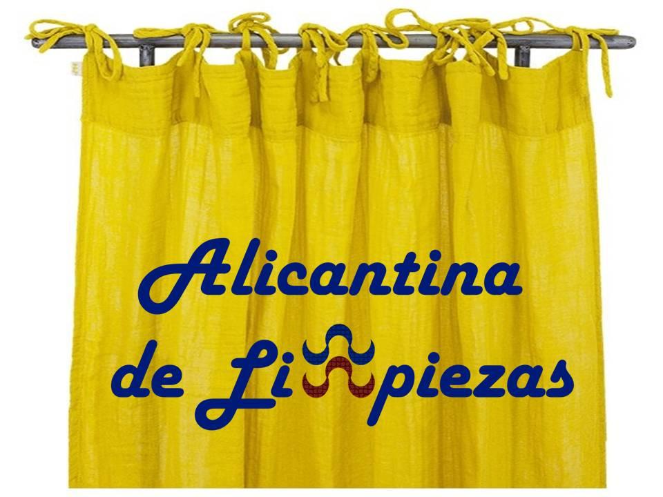 Alicantina de Limpiezas Alicante Limpieza Alacant Servicios Obras Reformas Hogar Empresa Calidad Confianza Personal Equipo Cualificado Productos Calidad