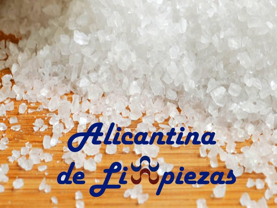 Empresa Sector Limpieza Alicante Prespuestos Obras Reformas Servicios Alicantina Limpiezas Mantenimientos Jardin Piscina Domestico Hogar Cliente Calidad Confianza Mantenimiento Fincas Costablanca Alacant