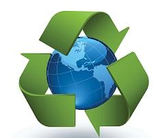 ecología, ecosistema
