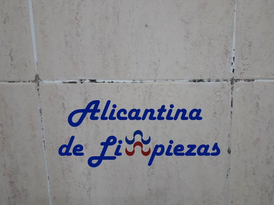 consejos eliminar moho en cuarto de baño después de usar la ducha alicantina de limpiezas alicantinadelimpiezas alicante